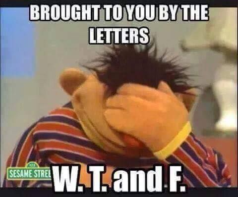 WTF Sesame street | Work humor, Funny, Funny quotes