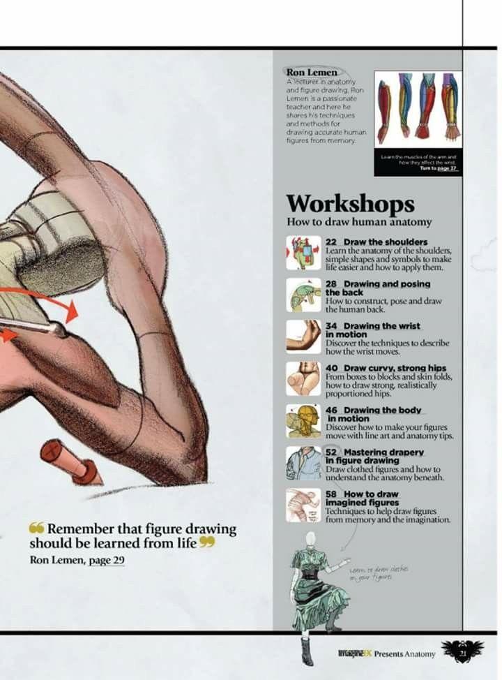 Pin by Tihomir Nyagolov on Anatomy - Human | Pinterest | Anatomy ...