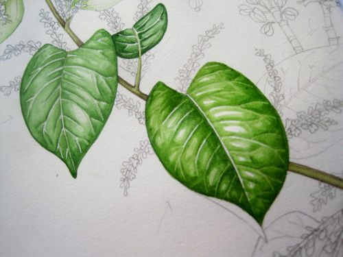 leaf painting techniques - photo #18