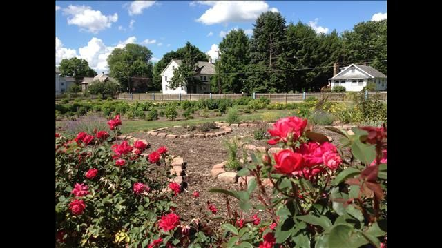 The Village of Zoar which has been added to endangered historic places list.