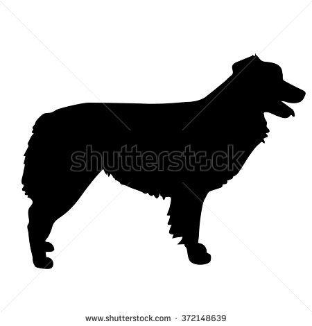 Australian Shepherd Stock Vectors Vector Clip Art Australian Shepherd Vector Art Dog Silhouette