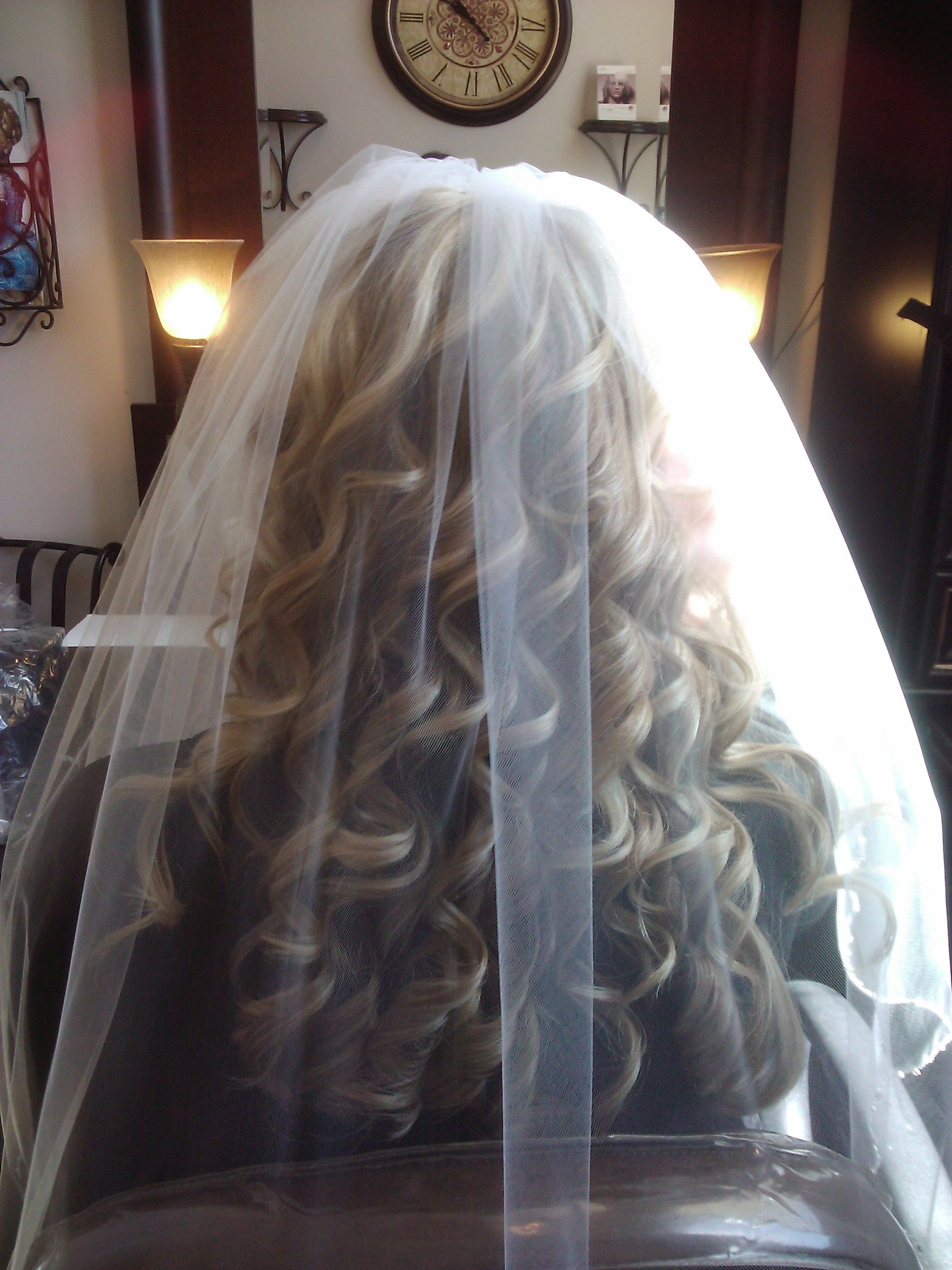 Bridal Half Updo With Veil Wedding Hair Styles Wedding
