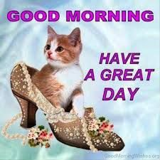 75 Have A Great Day Memes Quotes Images Texts Good Morning Cards Cute Good Morning Images Good Morning Sister