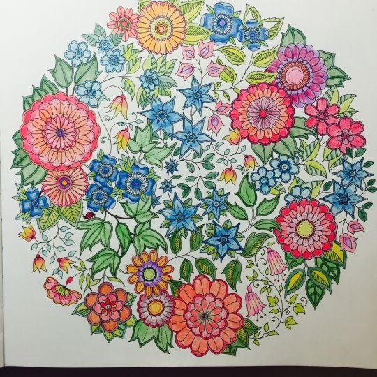 Colouring Gallery Picture By Chhavi Gupta India