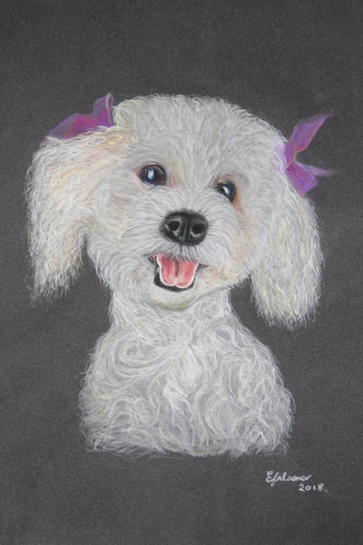 Happy Dog Art Print Pet Keepsake Animal Art Picture Bichon