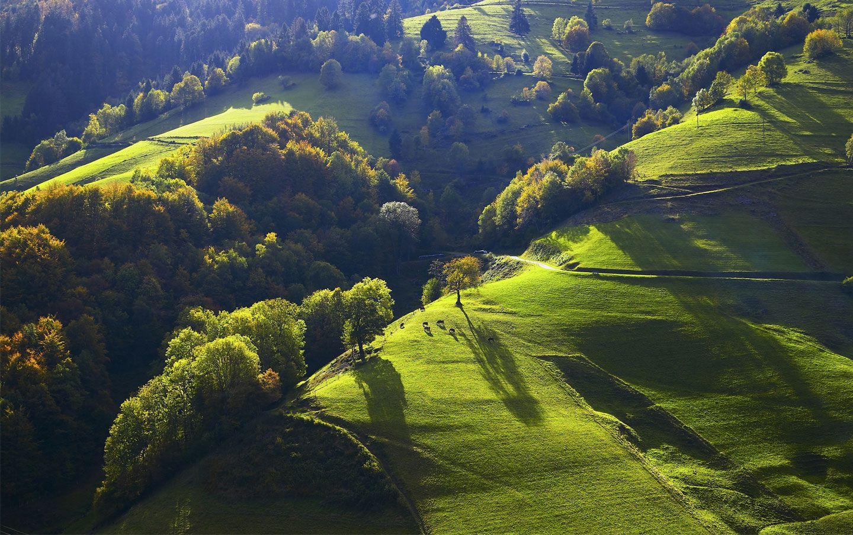 Die Besten 25+ Schwarzwald Tourismus Ideen Auf Pinterest