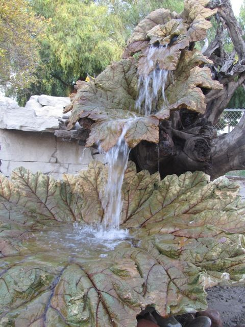 Gunnera leaf cast fountain This is spectacular! natural