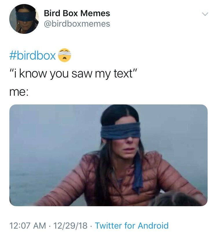 23 Hilarious Bird Box Memes That Are Probably Better Than The Movie Bird Boxes Hilarious Parenting Humor Memes