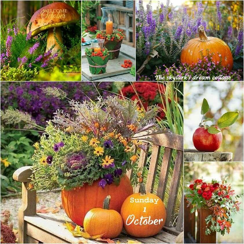 Pin de atai gaytan en decoraci n oto o decoracion oto o arreglos florales y oto o Decoracion otono