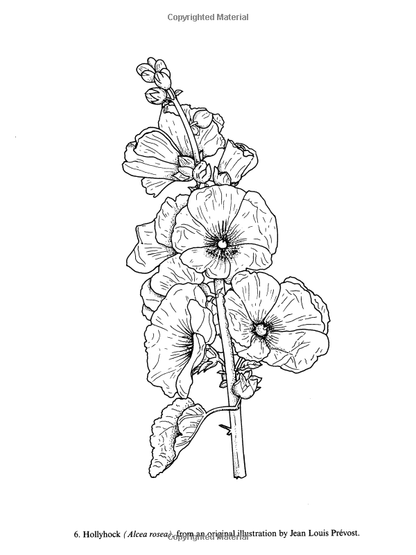 Color Your Own Great Flower Prints (Dover Art Coloring
