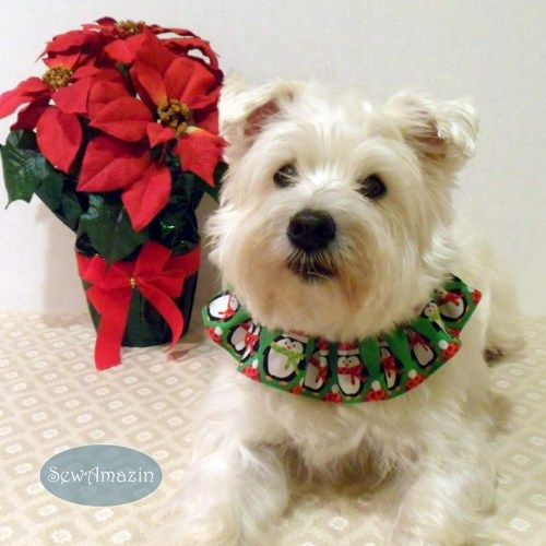 #Penguins Green #Christmas Winter #Dog or Cat Scrunchie Neck Ruffle @covergirlbeads