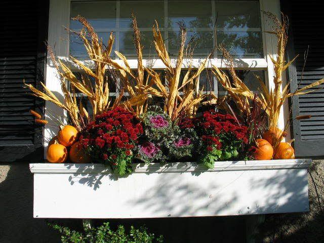 Id es cr atives de bac fleurs pour les fen tre flower for Decoration fenetre halloween