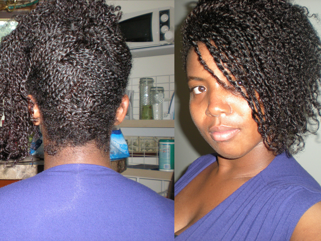 Natural Hair Mini Twists Are Taking Forever Natural Hair Care