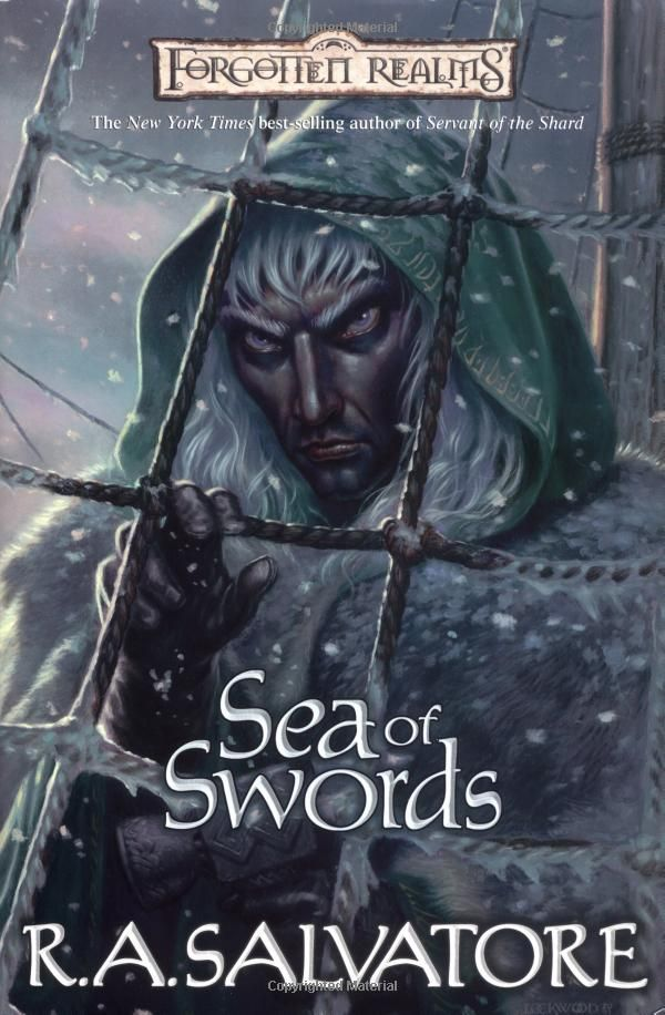 ☆ Sea of Swords: The Legend of Drizzt, Book XIII  : Series