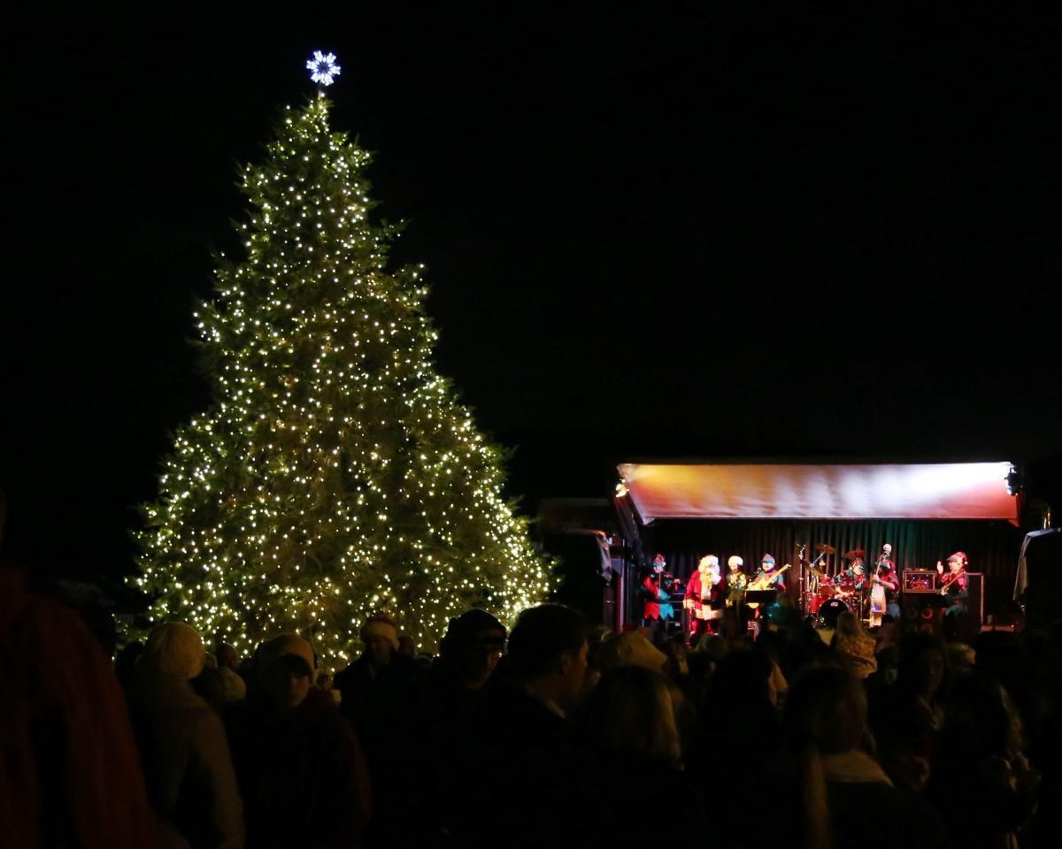 Tree Lighting Ceremony Bay Area