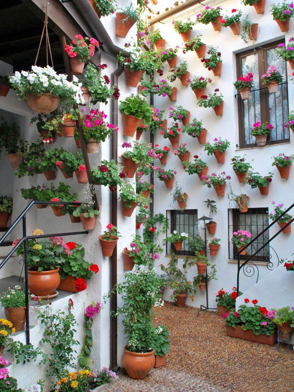 patio martin de roa cordoba 11 с изображениями картинки on sweet dreams for your home plants decoration precautions and options id=94655
