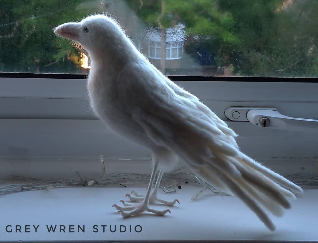 Needle felted White Raven. He's heading out to Mexico tomorrow. Such a healing piece. The actual bird and legs come together so quickly these days. (It's the wing/tail feathers that take the most time.) . . . #handmade #handcrafted #etsyseller #etsyuk #etsyshop #etsyfinds #woolsculpture #craftbuzz #craftsposure #artists_network #rspb_love_nature #HEYTHEREMAKER #ravensofinstagram #gothgift #needlefelted #woolfelting #needlefeltingsculpture #needlecraft #fibreartist #leicesterartist #WOWFELT_FEATU