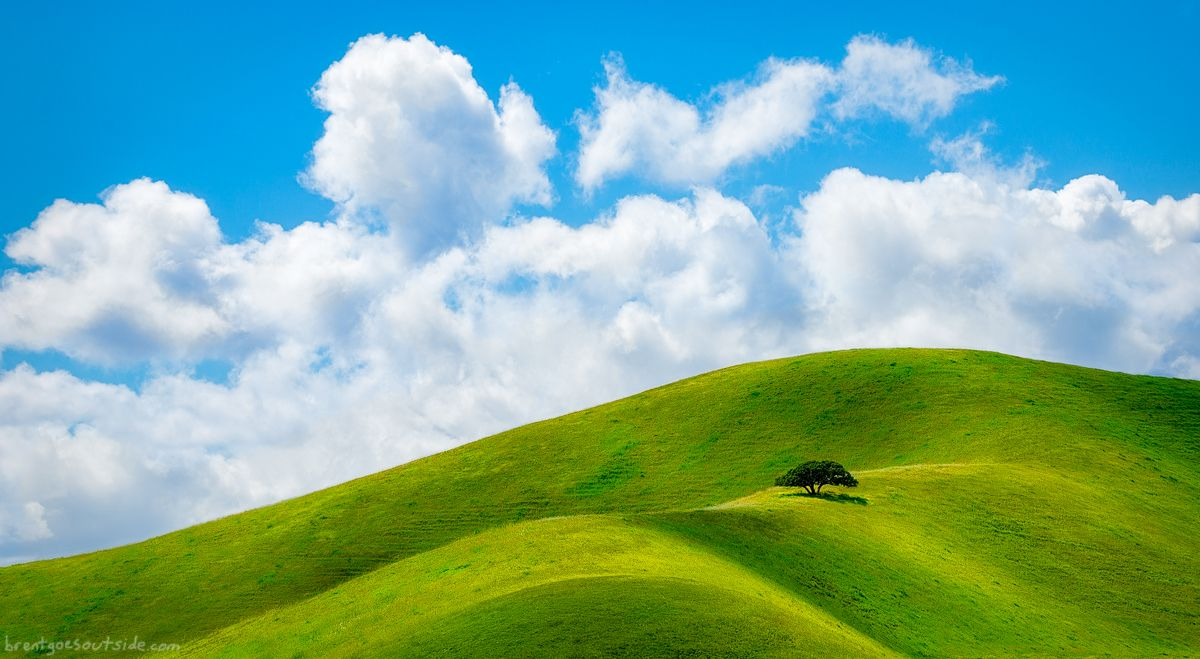 Doesnt This Look Like Bliss The Windows Xp Desktop