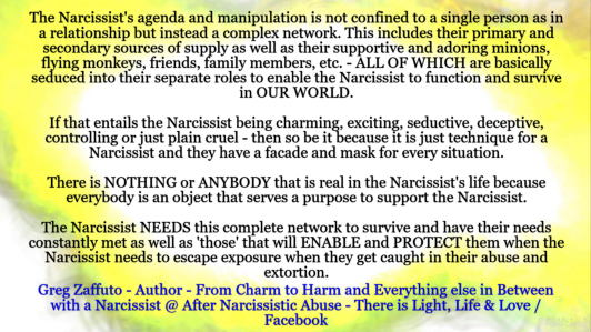 What Is Behind These Narcissistic Warriors That Will Feign Over And Protect  The Narcissist From Exposure? The Narcissist NEEDS This COMPLETE Network To  ...