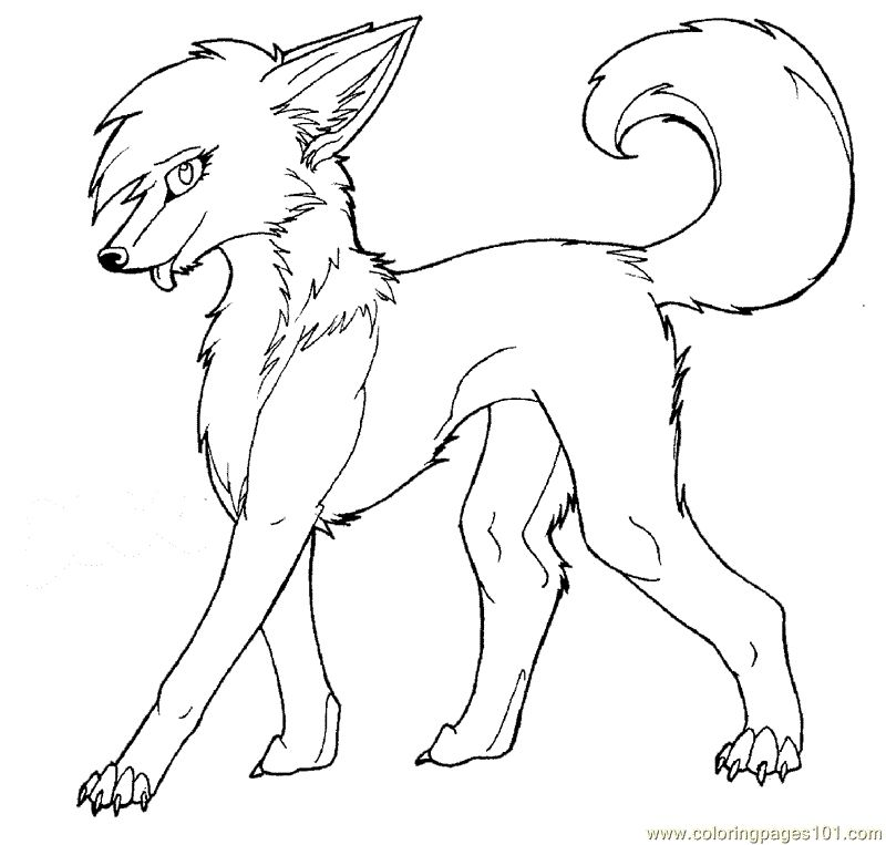 Anime Wolf Coloring Pages Animal