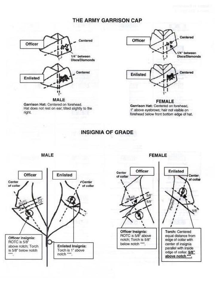 Asu Classroom Design Guidelines ~ Jrotc ranks insignia diagram pinterest