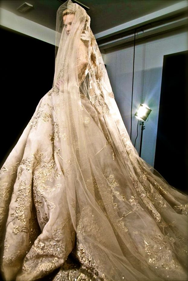 Golden Bridal Gown By Elie Saab 2012 Couture Show In Paris Is One Of My Favorite Designers SO Elegantly BEAUTIFUL