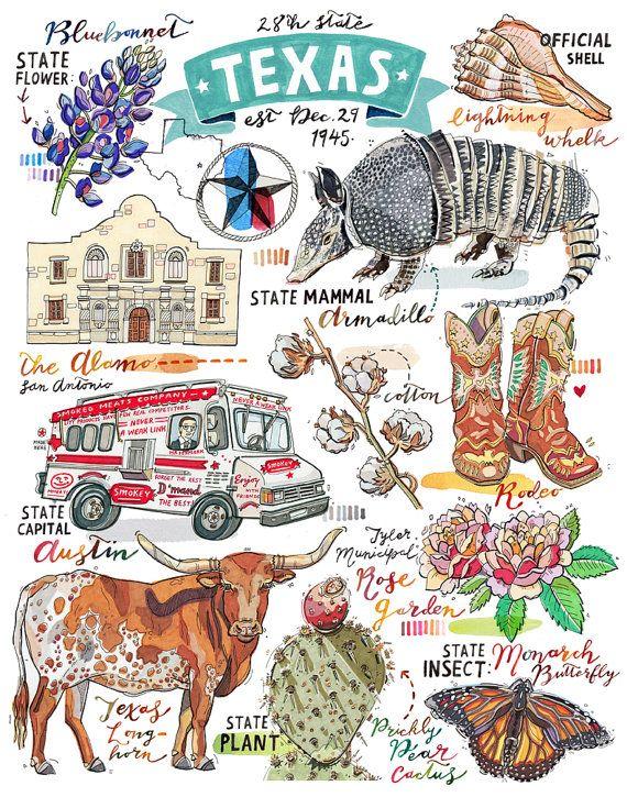 Texas Print Illustration State Symbols The Lone Star State