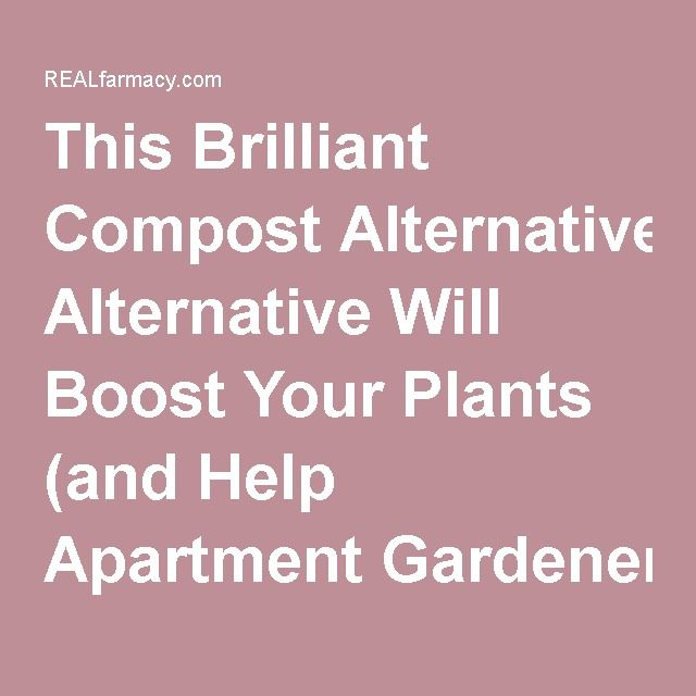 This Brilliant Compost Alternative Will Boost Your Plants (and Help Apartment Gardeners Too!) – REALfarmacy.com