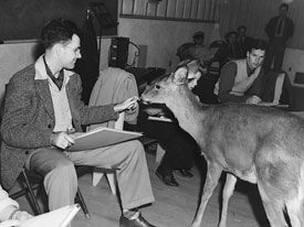 Training at Disney Animation in the old days (Frank Thomas w/deer)