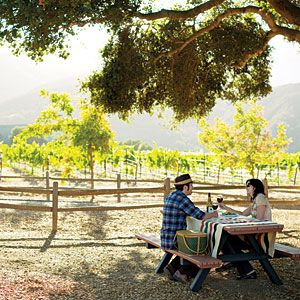 California fall trips: Follow Monterey Country's Wine Trail to the 20 or so wineries along River Road. Along the way, pick up organic broccoli and tomatoes at the Farm, stop for a lunch with a view, and even visit a ranch where lions and lynxes roam. A great way to spend the day!