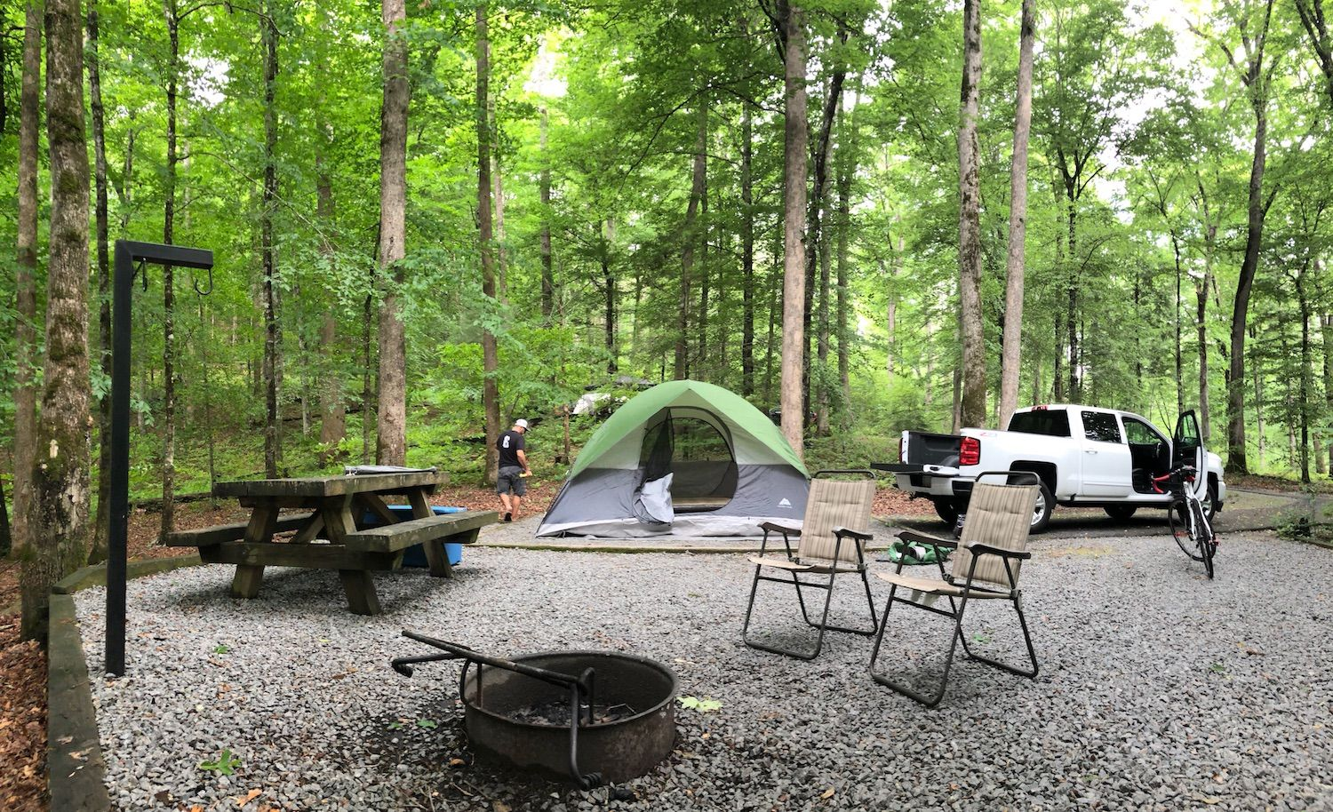 Davidson River Campground offers River Camping at its Finest