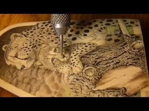 Scrimshaw Demonstration By Adams Cheetah David Adams