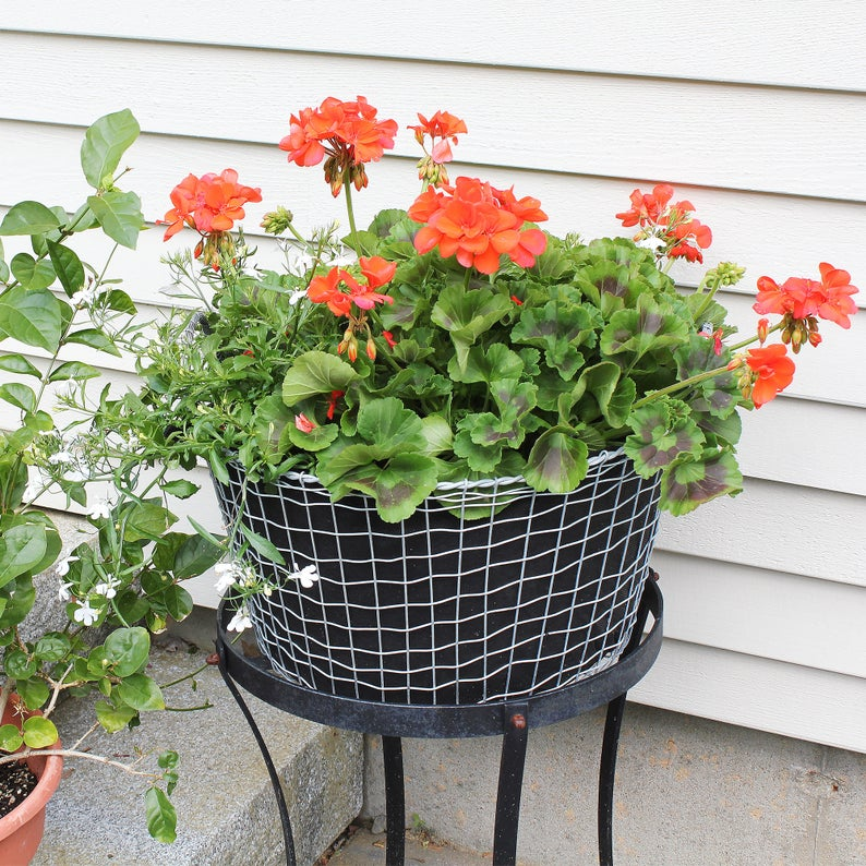 Aluminum Wire Baskets With Fabric Liners Set Of Two Sample Etsy Window Box Flowers Flower Boxes Wire Baskets