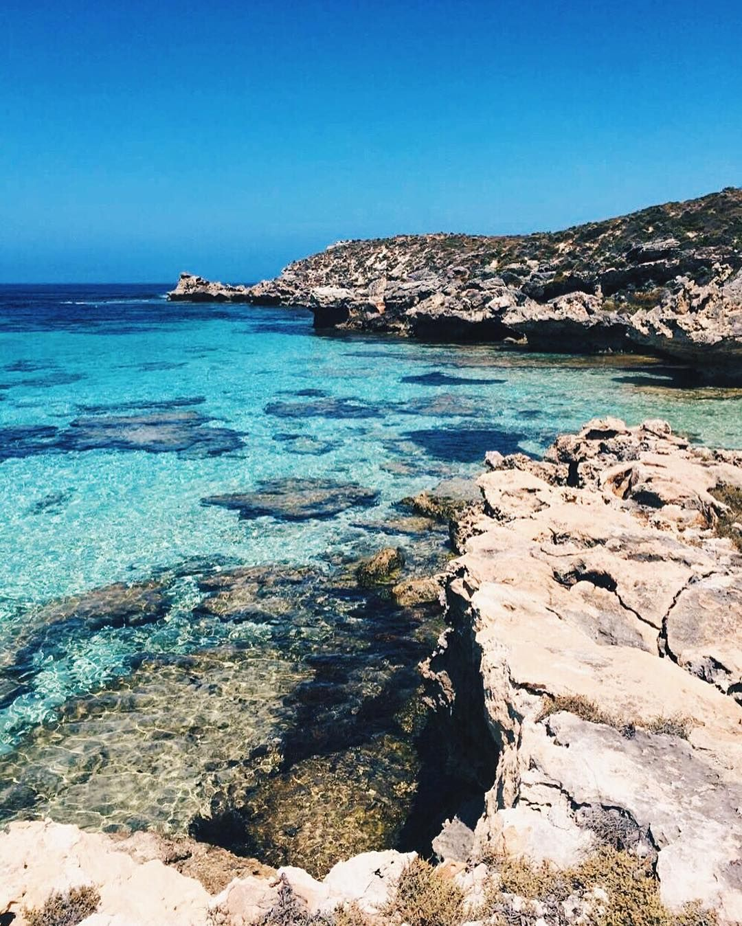 Where we'd rather be  exciting things to come  #rottnestisland by tikiboysco http://ift.tt/1L5GqLp