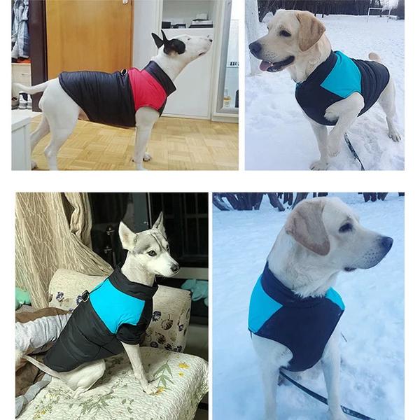 Descriere 1 Usor De Purtat Tine Cald Si Este Calduroasa Rezistent La Apă și Murdărie2 Puneti Inelu De Tragere Pe Spate Dog Winter Clothes Pet Jackets Pets