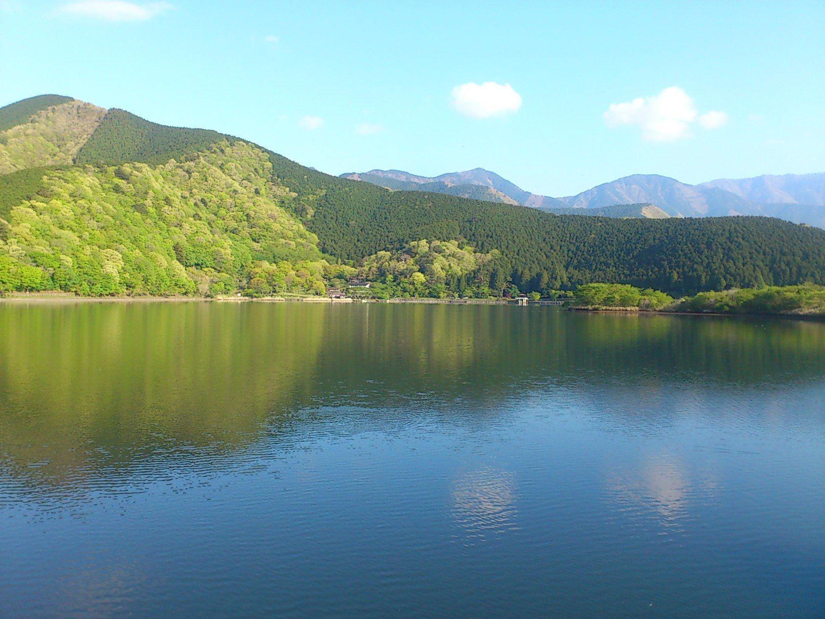 Shizuoka-Tanukiko 静岡県田貫湖