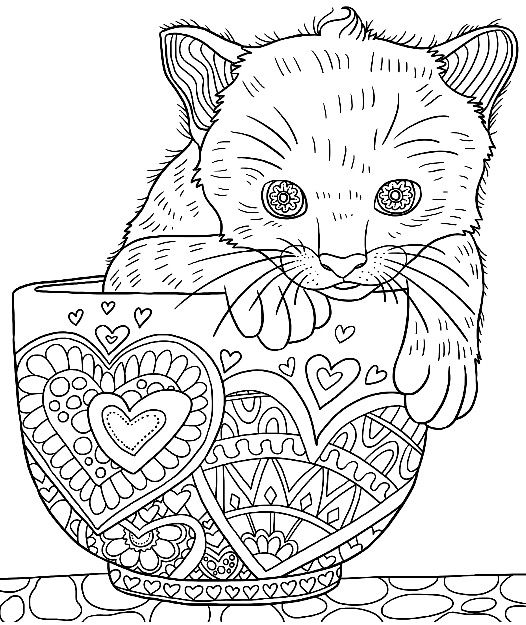 Cute Kitten in a Cup colouring