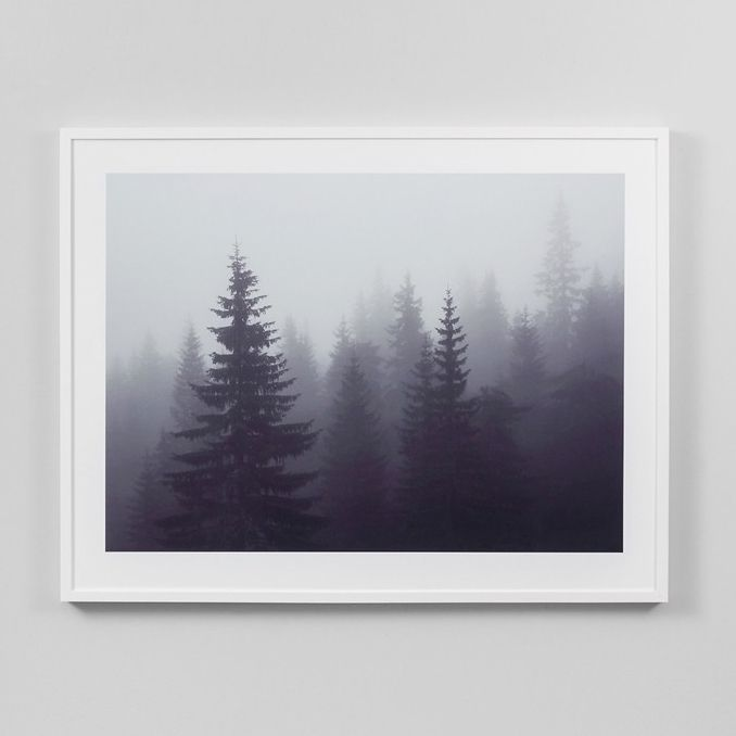 The Shelley Panton Store — Misted Forrest Print