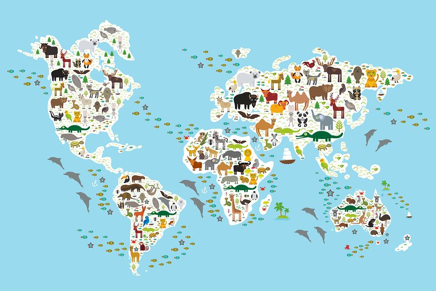 World map posters kinds styles and interesting designs jonas a world map poster for children gumiabroncs Images