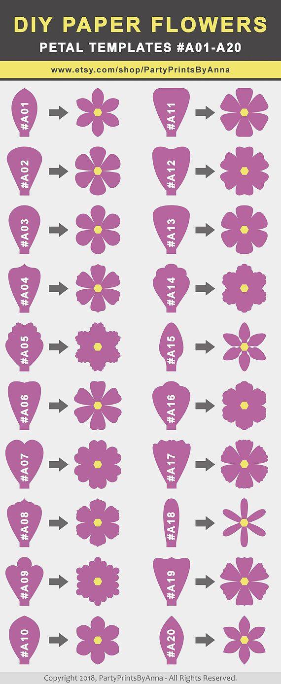 Svg Paper Flower Templates Set Of 50 Petals 4 Bases 6