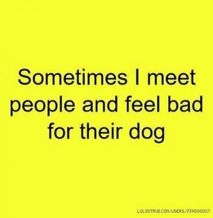 New Fitness Funny Quotes Dogs 22+ Ideas #dogs #funny #quotes #fitness