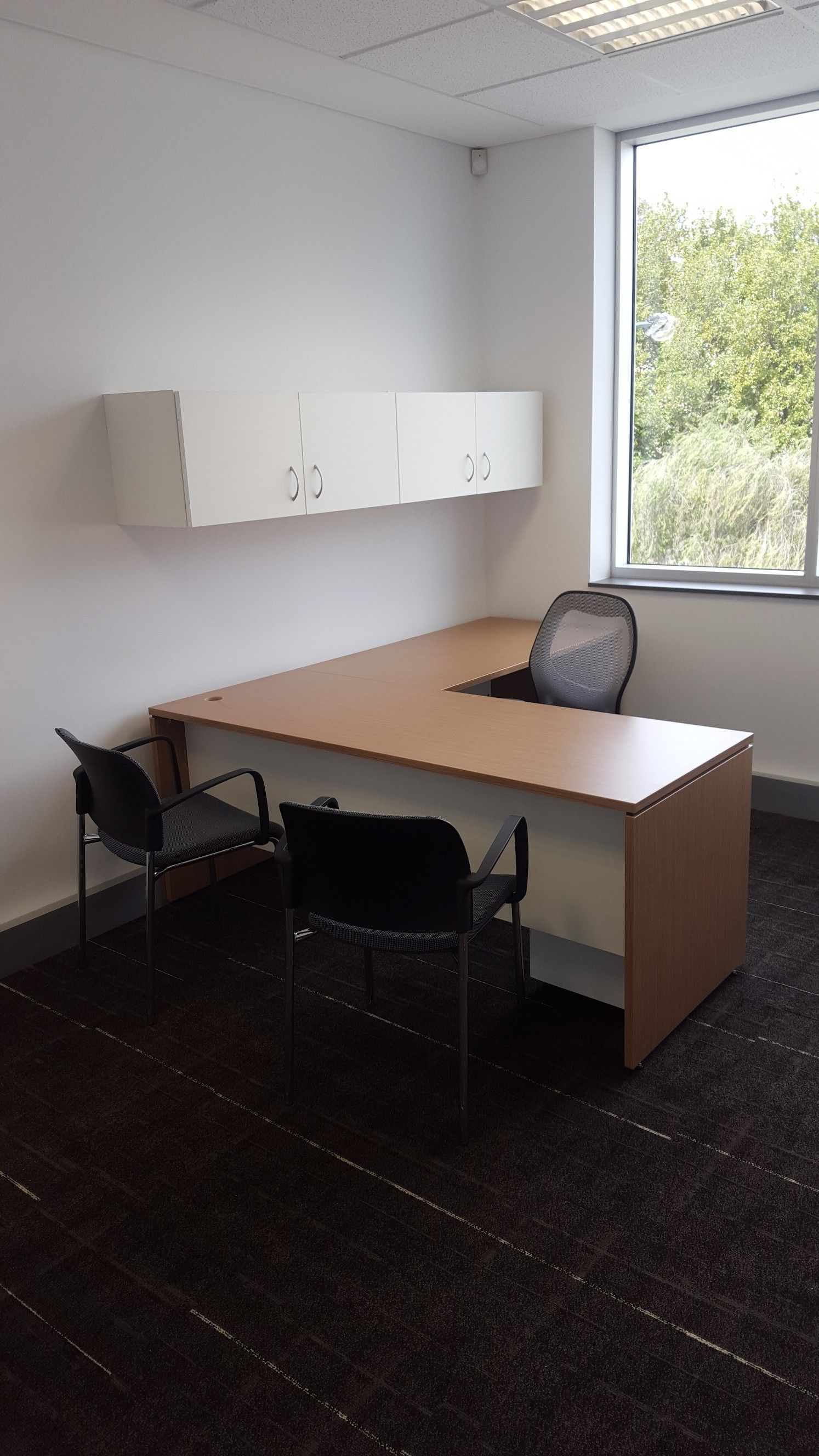 western pacific holdings office fit out by burgtec