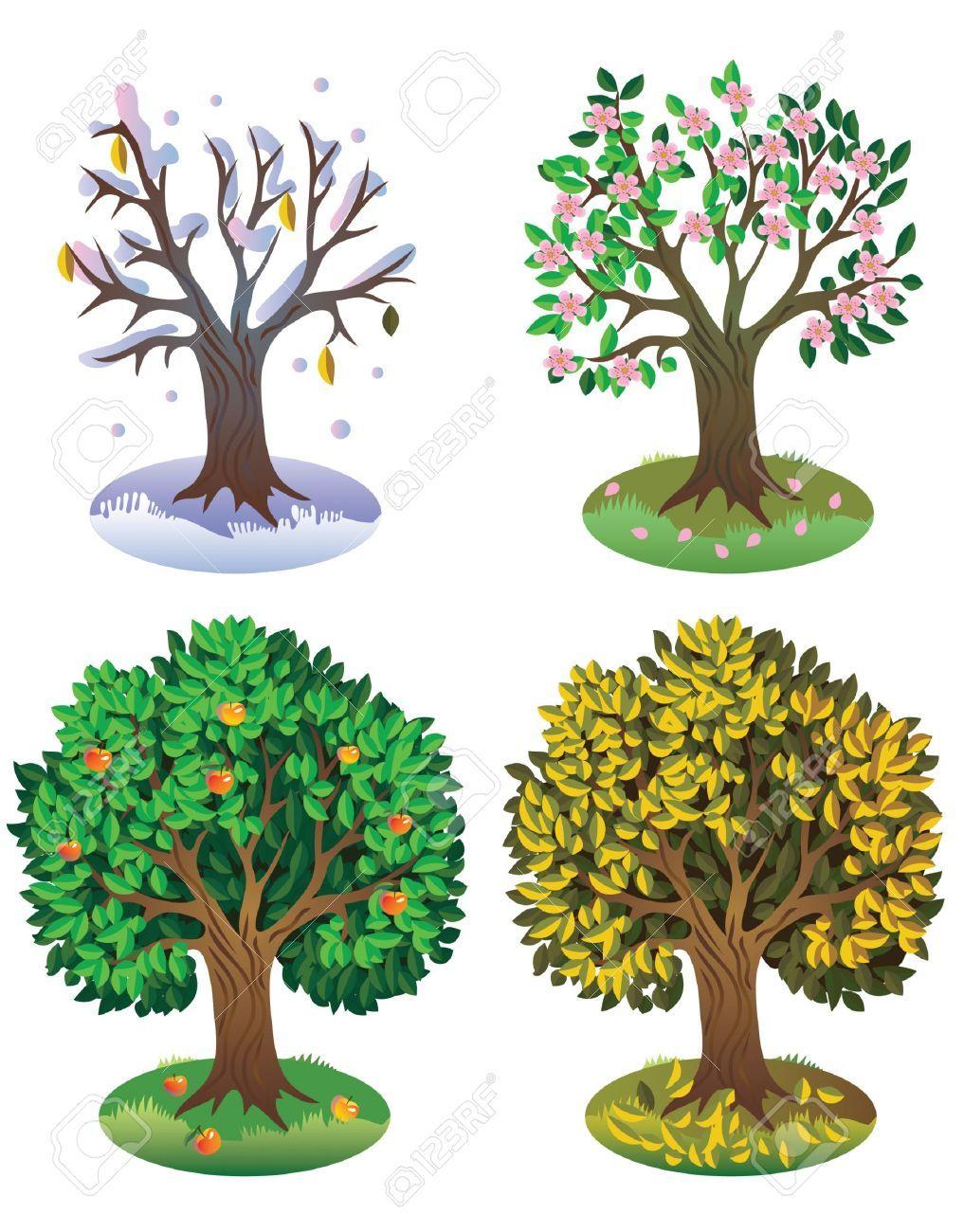 Seasons Of The Year Tree Four seasons o   ΕΠΟΧΕΣ-ΜΗΝΕΣ-ΚΑΙΡΟΣ ...