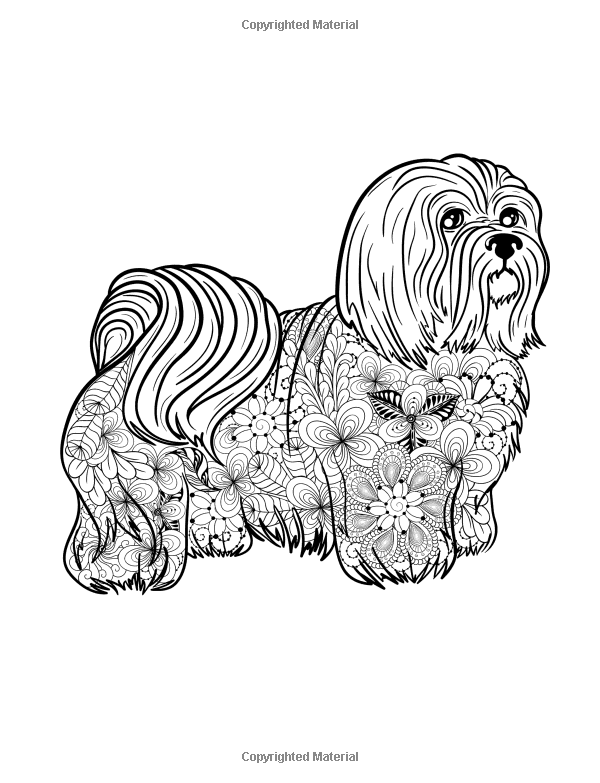 Small Dog Breeds Coloring Book Yorkshire Terrier Shih Tzu Pomeranian Chihuahua Pug Silky Terrier And Puppy T Toy Dog Breeds Silky Terrier Coloring Books