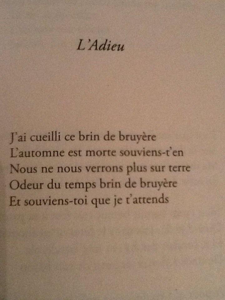 Guillaume Apollinaire Poeme Et Citation Citation Citation Auteur