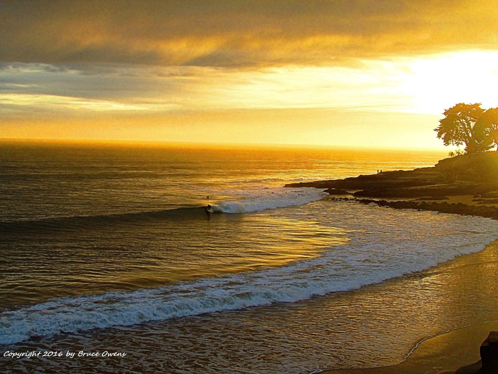 Pin by Sherri Vultaggio on Santa Cruz county....home | Pinterest ...