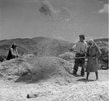 Βούλα Παπαϊωάννου, Λίχνισμα. Πελοπόννησος ή Λαμία. 1950-1955. Φωτογραφικά Ιστορικά Αρχεία του Μουσείου Μπενάκη.