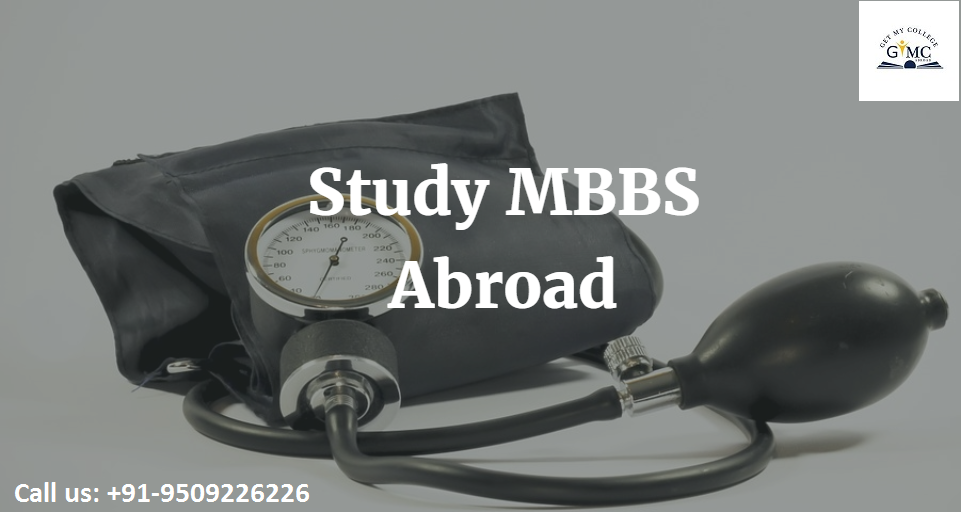 Studymbbsabroad Consultant For Indian Students With Low Fee