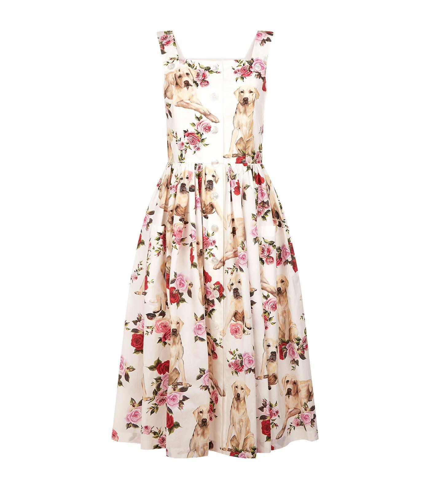b3071684 Dolce & Gabbana Labrador Print Cotton Dress | Harrods.com | Dress ...