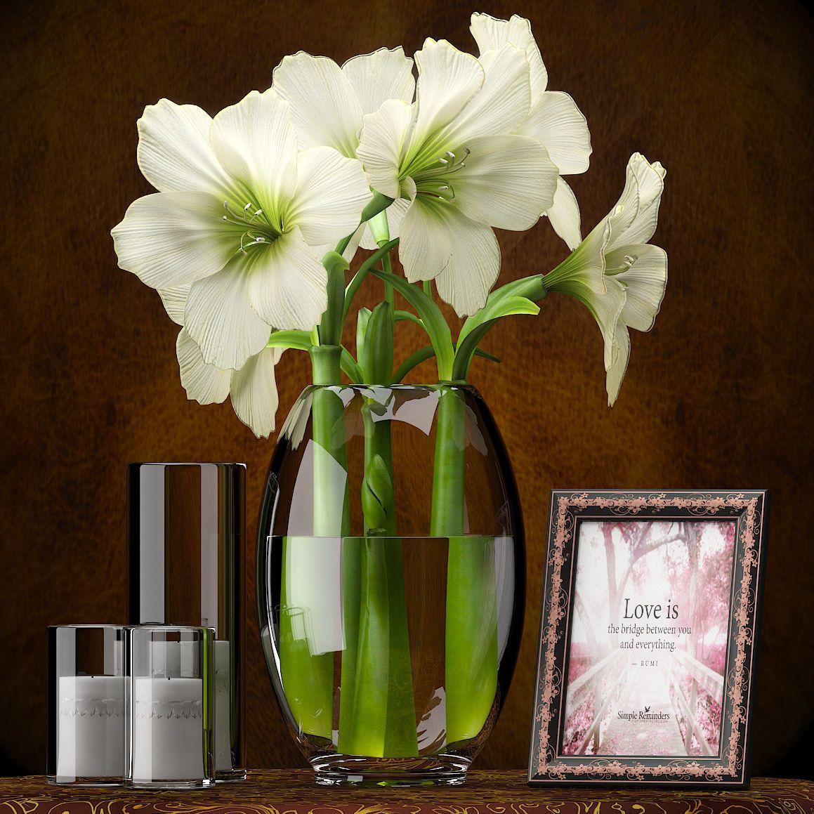 Flowers Amaryllis 3d Model Max Obj Mtl 1 Decor Amaryllis Vases Decor